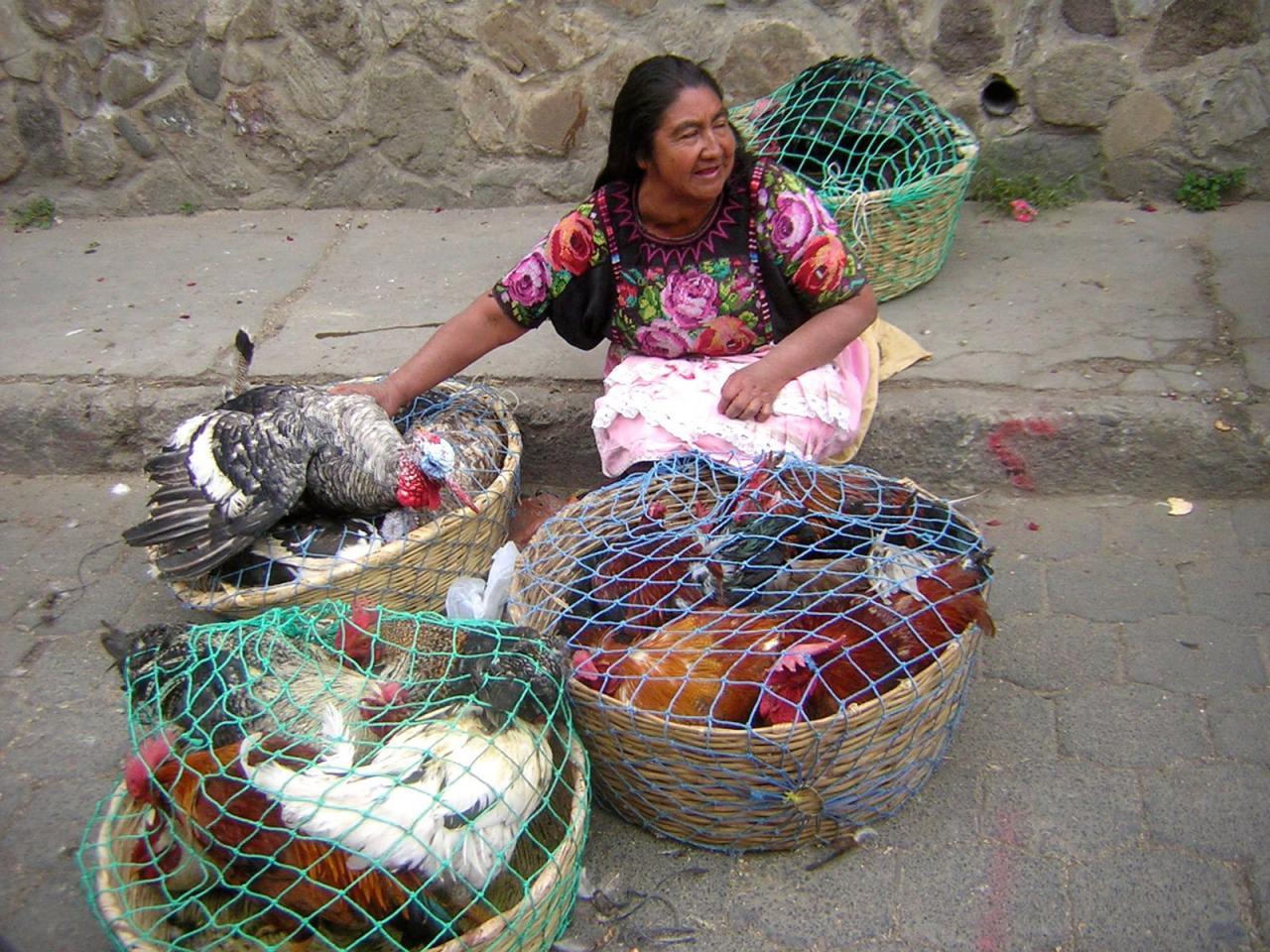 14 MARCHANDE DE VOLAILLES GUATEMALA