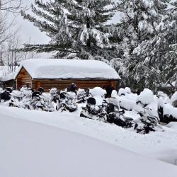 21 Une cabane au canada