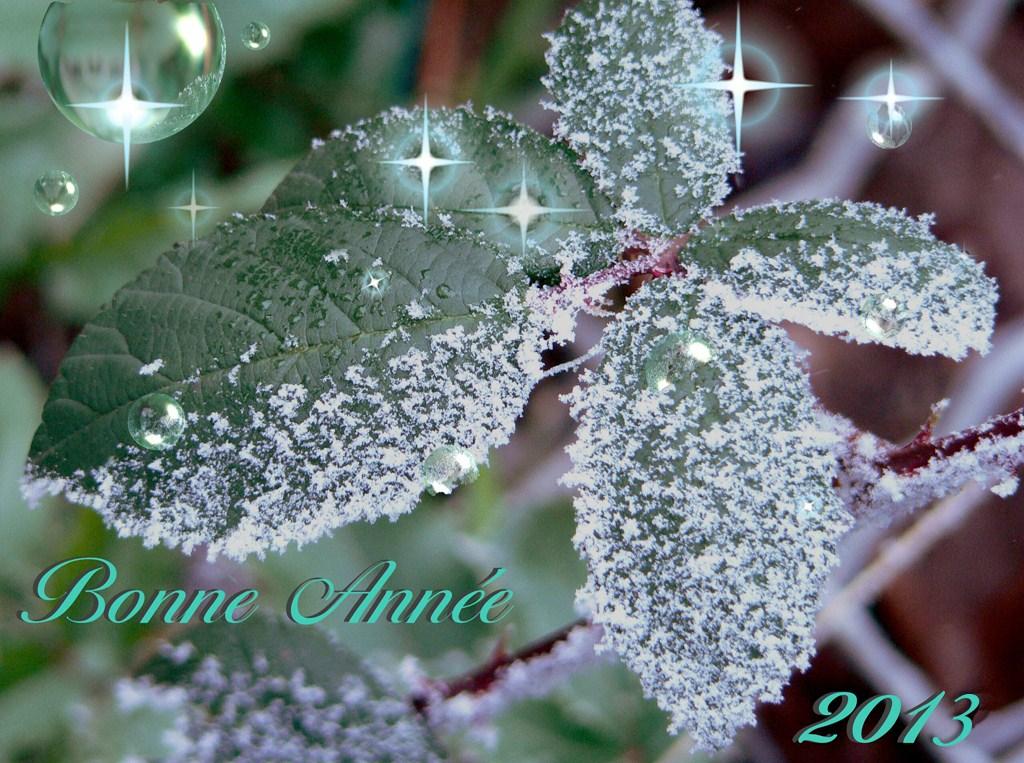 Bonne anné 2013 (Copier)