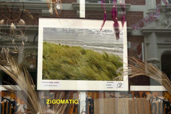 Zigomatic